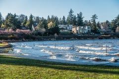 Seattle Lake Shoreline. A veie of the shoreline on Lake Washington near Seward Park Stock Photos