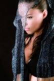 Veil Stock Image