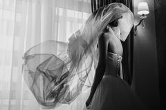 Veil flys over a bride Royalty Free Stock Image