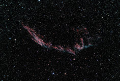 Veil nebula. Taken by telescope, this one is named veil nebula is a cloud of ionized gas, located in the constellation Cygnus. It is a great example that what Stock Photography