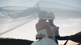 Veil waving on the wind. Bride and groom tenderly hugging on sunset. Evening of beautiful man and woman after wedding. stock video