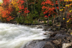 Veiled Autumn Rapids 2 Royalty Free Stock Photography