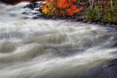 Veiled Autumn Rapids 1. An autumn scene depicting a fast moving current at the bottom of a waterfall. This image employs a long exposure to achieve intentional stock photos