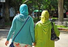 Veiled Muslim women. Two veiled muslim women walking down the park Stock Image