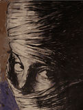 Veiled Woman. A veiled woman looks straight into view royalty free illustration