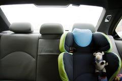 Veiligheid in de auto Royalty-vrije Stock Foto's