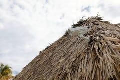 Veiligheidscamera op dak stock foto's