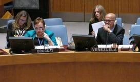 Veiligheidsraad 7760 de samenkomende Verenigde Naties royalty-vrije stock afbeeldingen