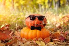 Veille de la toussaint drôle Potiron dans des lunettes de soleil dans la forêt Photos libres de droits