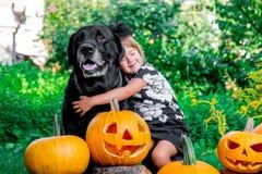 Veille de la toussaint L'enfant s'est habillé dans le noir près de Labrador entre la décoration de cric-o-lanterne, des bonbons o Image stock