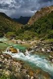 Veine de fleuve de montagne images libres de droits