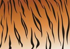 Veines de tigre Photo libre de droits