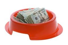 Veinte cuentas de dólar en tazón de fuente rojo del alimento de perro Foto de archivo libre de regalías
