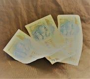 veinte dólares de Hong Kong Imagen de archivo libre de regalías