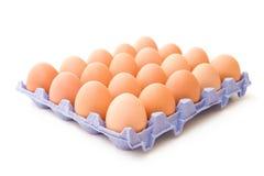 Veinte huevos Foto de archivo libre de regalías