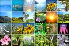 Veinticuatro imágenes coloridas alegres a propósito del viaje para un calendario del advenimiento o un juego de la memoria o para fotografía de archivo