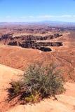 Национальный парк Canyonlands    Стоковая Фотография RF
