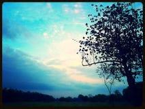 Veiw природ Стоковые Фотографии RF