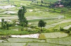 Veiw del país Imagenes de archivo
