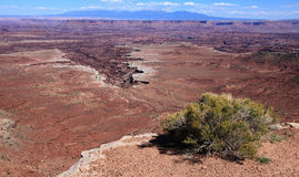 Canyonlands National Park. Veiw from Grand View Point Over In Canyonlands National Park Royalty Free Stock Photography