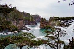 Veiw rocheux de falaise par les arbres Image libre de droits