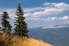 Veiw from top. The Carpathians in Romania, Sinaia. Summer stock photos