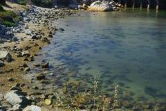 Veja a água Half Moon Bay Fotografia de Stock