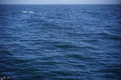Veja a água Half Moon Bay Imagem de Stock