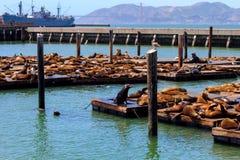 Veja do cais 39 em San Francisco imagens de stock royalty free