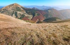 Veja os prados no vale de Vratna no parque nacional Mala Fatra, Eslováquia foto de stock