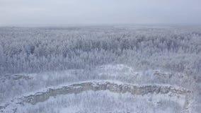 Veja a pedreira e a floresta neve-tampadas de uma opinião do s-olho do ` do pássaro video estoque