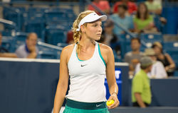 Vekic 107 Stock Images