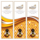 Vektor abstrakter Honey Banners Lizenzfreie Stockfotos