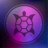 Vektor-australische Art-Schildkröte auf einem kosmischen Hintergrund Stockbild