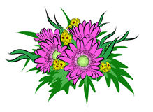 Vektor av blomman Arkivfoto