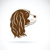 Vektor av den stolta hunden för konung Charles Spaniel på vit bakgrund vektor illustrationer
