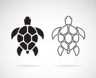Vektor av sköldpaddadesignen på en vit bakgrund reptil anhydrous stock illustrationer