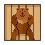 Vektor-Bär im Zookäfig Starkes furchtsames wildes Tier in der Gefangenschaft Flache Art bunte Karikaturillustration vektor abbildung