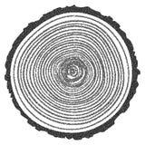 VEKTOR-Baum-Ringe Dotwork Halbton Lizenzfreie Stockfotografie