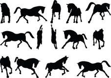 Vektor-Bild - Pferdeschattenbild in laufender Haltung auf weißem Hintergrund Stockfotografie