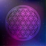Vektor-Blume des Leben-Symbols auf einem kosmischen Hintergrund Lizenzfreie Stockfotos