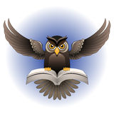Vektor brun ugglafluga med boken Arkivbilder