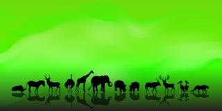 Vektor des afrikanischen Hintergrundes der wild lebenden Tiere Lizenzfreie Stockfotografie