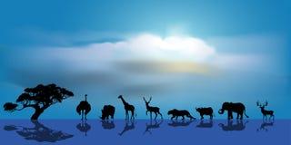 Vektor des afrikanischen Hintergrundes der wild lebenden Tiere Stockfotos