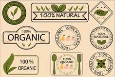 Vektor des biologischen Lebensmittels Lizenzfreie Stockfotos