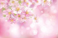 Vektor des Frühlingshintergrundes. Lizenzfreie Stockbilder