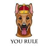 Vektor des Schäferhunds des Hundekopfes in der Krone Vektor Stockfotos