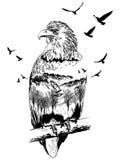 Vektor-Doppelbelichtung, Adler, Konzept der wild lebenden Tiere stock abbildung
