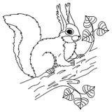 Vektor-Eichhörnchen, das auf dem Baum sitzt Stockfoto