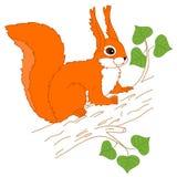 Vektor-Eichhörnchen, das auf dem Baum sitzt Stockbild